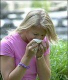 Alergijski_rinitis