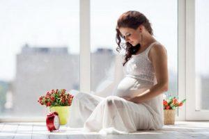 Priprema za porodjaj