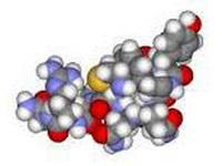 sindrom-schwartz-batterov
