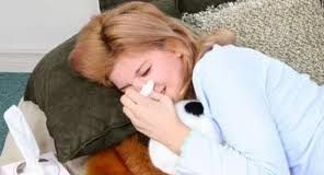 Gripa_i_jačanje_imunološkog_sistema