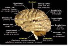 lecenje_kod_tumora_mozga