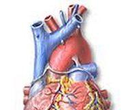 Obliterantna arterioskleroza