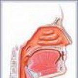 Pareza mišića larinksa